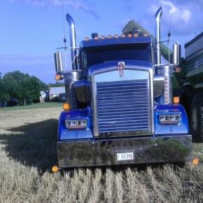 blue kenworth in fields