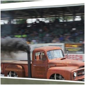 Diesel Ratty