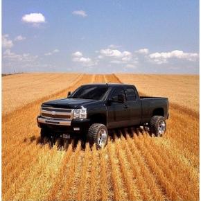 Duramax in a Field