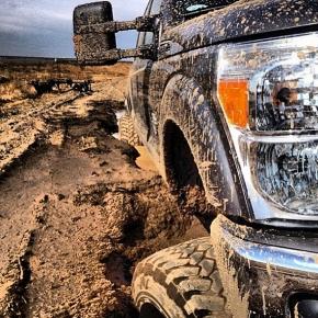muddy-ps