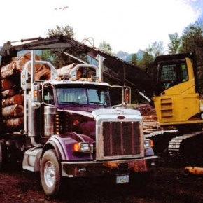 Big Rig with Logs