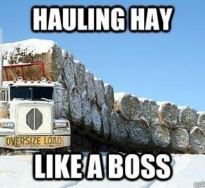 Hay Haulin